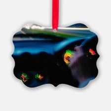 Drink-driving Ornament