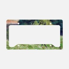 Rutting red deer stag License Plate Holder