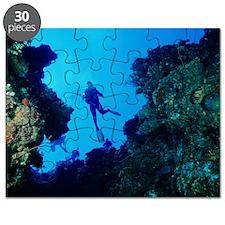 Scuba divers Puzzle