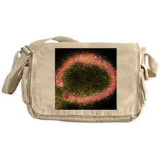 Ebola virus particles, TEM Messenger Bag