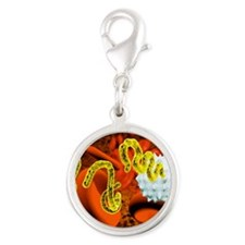 Ebola virus and blood cells Silver Round Charm