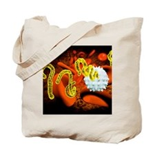 Ebola virus and blood cells Tote Bag