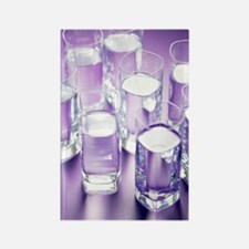 Eight glasses of water Rectangle Magnet