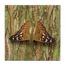 Butterfly : Hackberry Emperor Tile Coaster