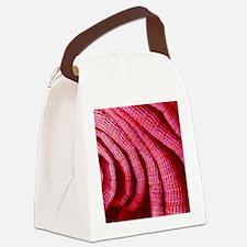 Sea squirt's gills, SEM Canvas Lunch Bag