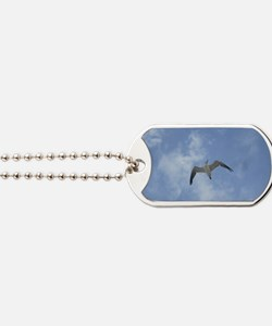 Lone Seagull Dog Tags