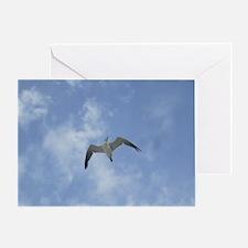 Lone Seagull Greeting Card