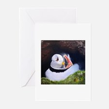 """""""Puffin"""" Greeting Cards (Pk of 10)"""