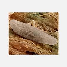 SEM of Paramecium Throw Blanket