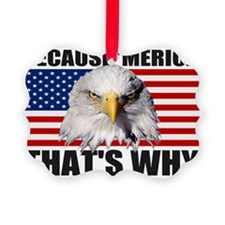 Because MERICA Thats Why US Flag  Ornament