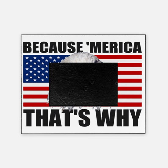 Because MERICA Thats Why US Flag Ame Picture Frame