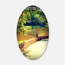 Isaiah 42 Oval Car Magnet