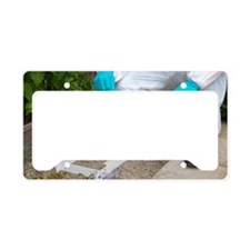 Footprint recovery License Plate Holder