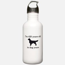 60 birthday dog years golden retriever Water Bottl