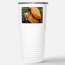 SEM of bed bugs Travel Mug