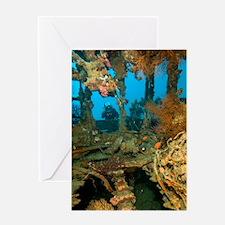 Shipwreck interior Greeting Card