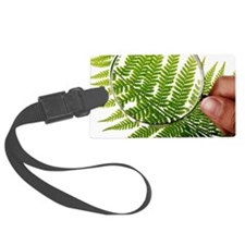 Fern frond morphology Luggage Tag