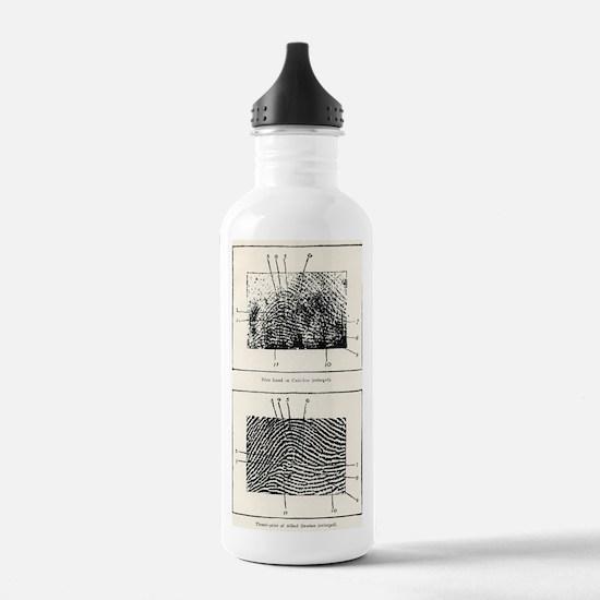 Fingerprint evidence,  Water Bottle