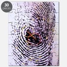 Fingerprint analysis Puzzle