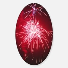 Firework display Decal