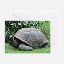 I am in top gear! Tortoise at top sp Greeting Card