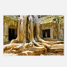 Ta Phrom Kapok Roots Postcards (Package of 8)