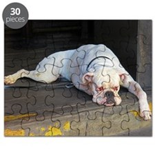 Dog in Bar Puzzle