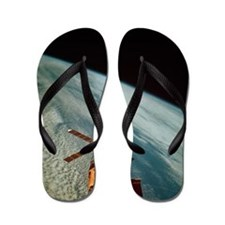 Skylab 1 space station in orbit Flip Flops