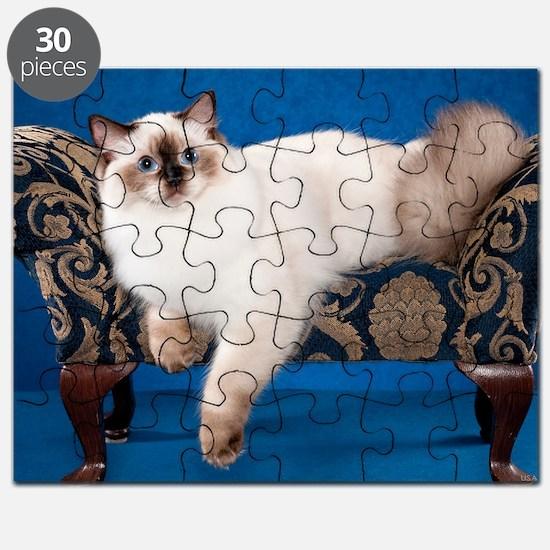 Ragdoll Wall Calendar Puzzle