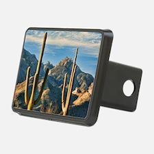 saguaro vista Hitch Cover