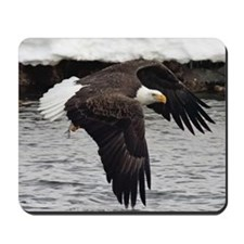 Eagle, Fish in Talons Mousepad
