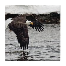 Eagle, Fish in Talons Tile Coaster