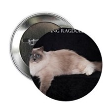 "Ragdoll Wall Calendar 2.25"" Button"