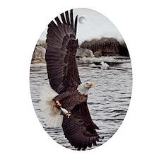 Striking Eagle Oval Ornament
