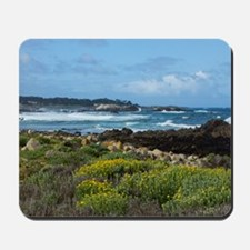 Monterey Coastal Blooms Mousepad