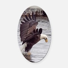 Striking Eagle Oval Car Magnet