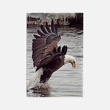 Striking Eagle Rectangle Magnet