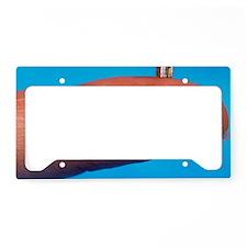 Smallest book License Plate Holder