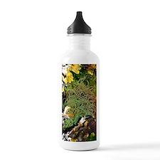 Snakelocks anemone Water Bottle