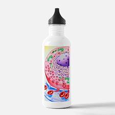 Artwork of insulin gra Water Bottle