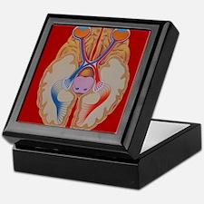 Brain and vision Keepsake Box