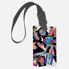 Assortment of coloured X-rays an Luggage Tag