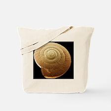 Snail shell, SEM Tote Bag