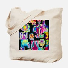 Assortment of coloured X-rays and body sc Tote Bag
