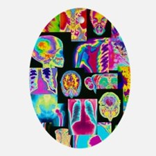 Assortment of coloured X-rays and bo Oval Ornament