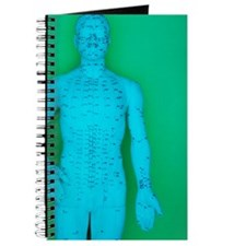 Acupuncture model Journal