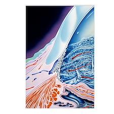 Eye anatomy, artwork Postcards (Package of 8)