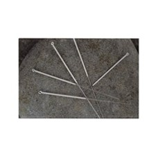 Acupuncture needles Rectangle Magnet