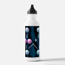 Gender determination Water Bottle