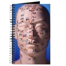 Acupuncture chart Journal